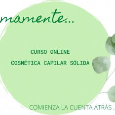 Curso Online de Champú Sólido
