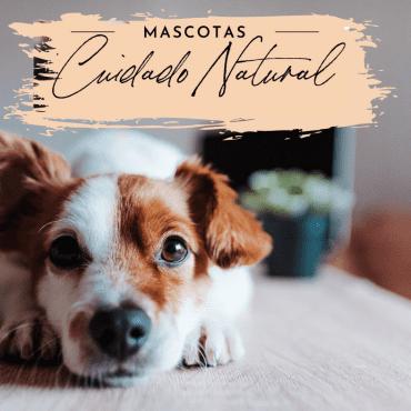 CUIDADO NATURAL DE MASCOTAS